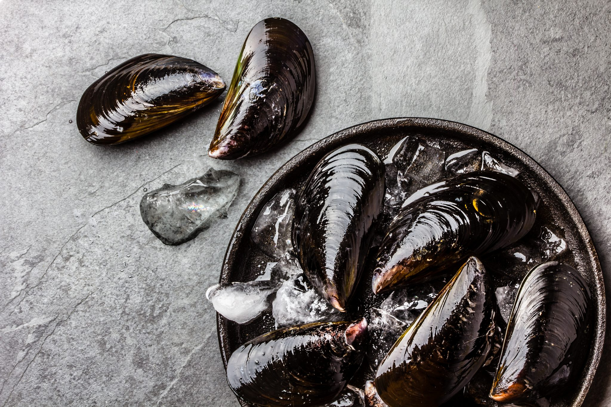 Fresh uncooked big mussels on ice. Slate background.
