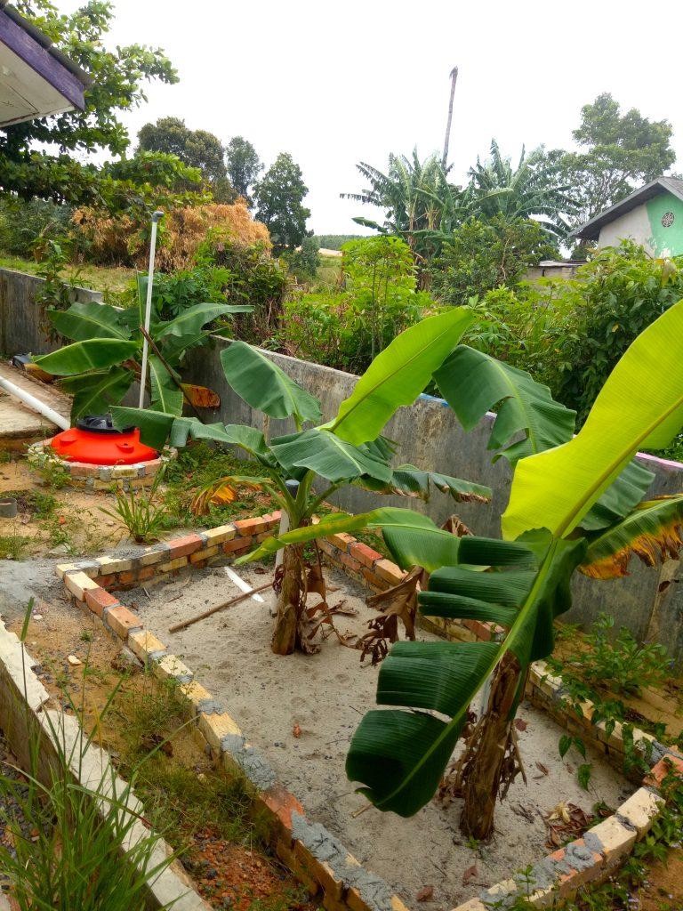Garden 2 copy • eat blue™