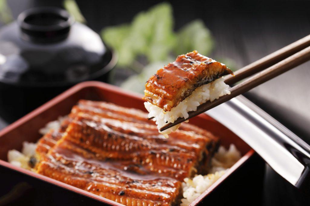 うな重 Unagi Grilled Eel over Rice with Japanese Sauce